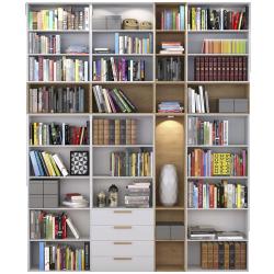 Bibliothèque spaceo décor chêne