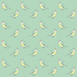 Papier peint oiseau